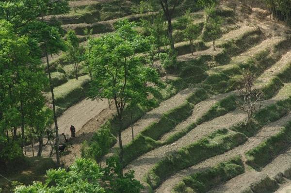 April 5 - Trek to Ghurmu (106)